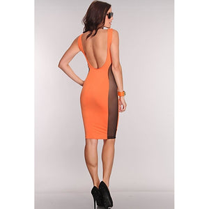 Orange Delight Mesh Bodycon Dress
