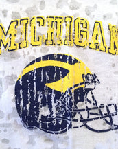 University of Michigan Long Sleeve Burnout Crew (logo only)