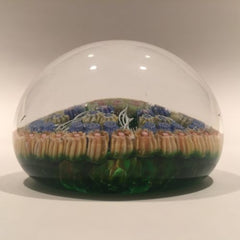 Vintage Perthshire Art Glass Paperweight 7 Spoke Twists & Millefiori on Green