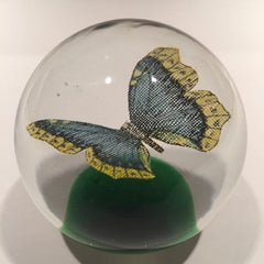 Vintage Beranek Czech Art Glass Paperweight Detailed Butterfly On Green
