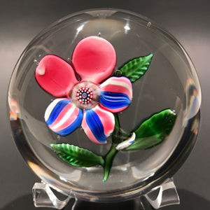 Antique Boston & Sandwich Art Glass Paperweight Lampworked Wheat Flower Pansy