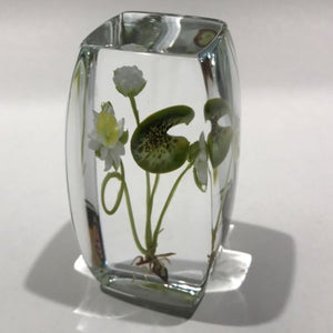 Signed Paul Stankard Art Glass Paperweight Block Lampworked Water Lilly