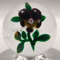 Antique Baccarat Art Glass Paperweight Lampwork Yellow Pansy Star Cut Base