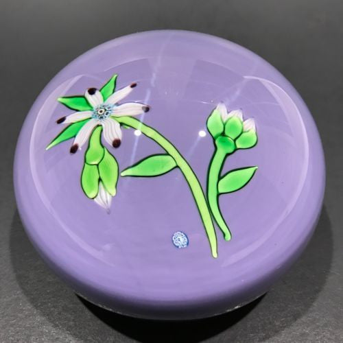 Vintage Perthshire Lampworked Flower Art Glass Paperweight LE 1974B