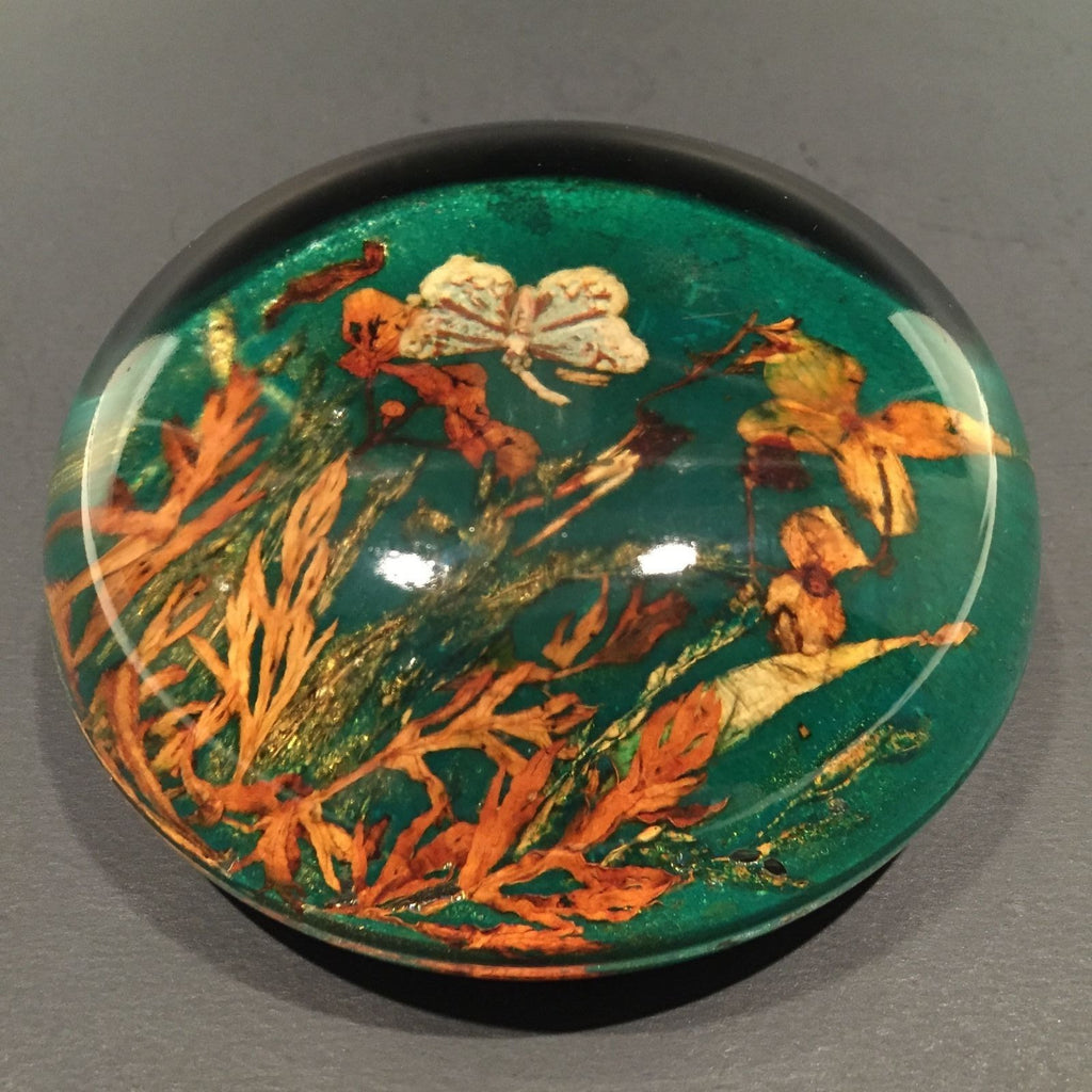 Unusual Antique English Art Glass Paperweight Real Plants Half Dome