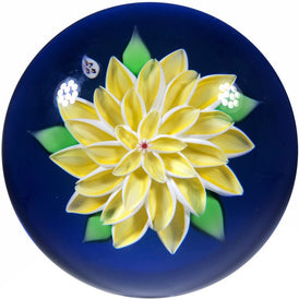 Baccarat 1973 Art Glass Paperweight Lampwork Yellow Dahlia on Blue Ground