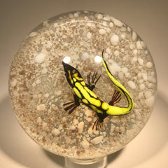 Vintage Harold Hacker Art Glass Paperweight Lampwork Lizard on Mottled Ground