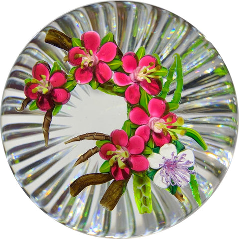 Ken Rosenfeld 2019 Lampwork Apple Blossoms with Fancy Radial Faceted Base