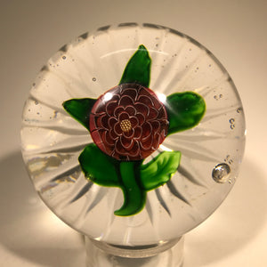 Rare Miniature Baccarat Antique Art Glass Paperweight Lampwork Camomile Pompon