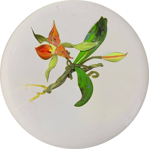 Paul Stankard 1983 Lampwork Orchid on Clear Ground