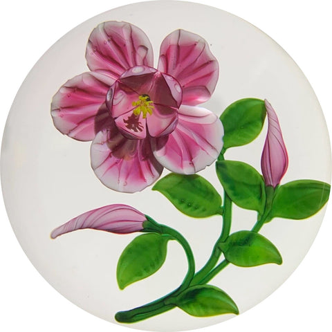 Randall Grubb 1995 Lampwork Pink Hibiscus with Two Buds On Clear Ground