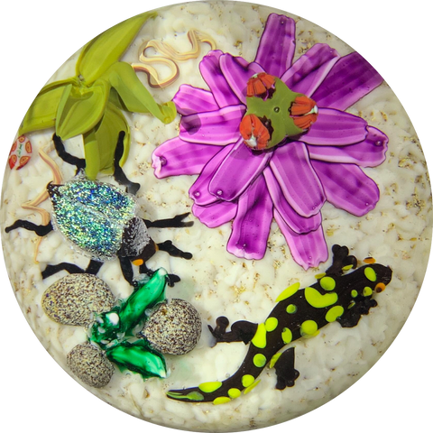 Contemporary Mickael Hingant Lampwork Fire Salamander & Dichroic Beetle with Flora