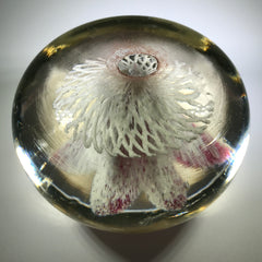 Rare Ed Rithner Art Glass Paperweight Maroon Flower on Frit Doily