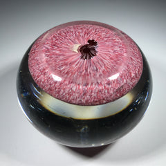Rare Antique Saint Louis Art Glass Paperweight Lampwork Clematis on Red Jasper Ground