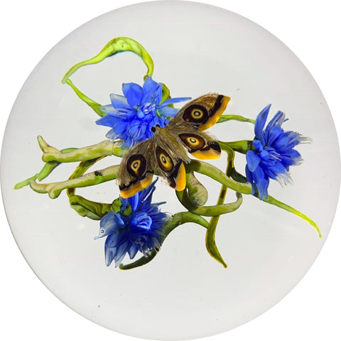 Signed Paul Stankard Lampwork Blue Field Flowers with Hovering Eyespotted Moth
