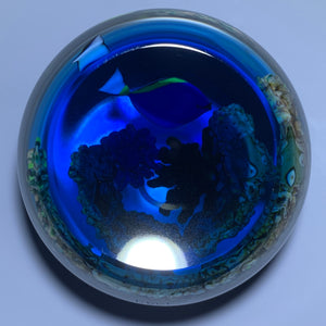 Gordon Smith 1994 Tropical Tang Fish with Textured Coral & Transparent Blue Ground