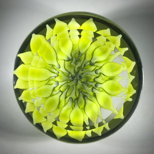 Saint-Louis 1969 Art Glass Paperweight Lampwork Chartreuse Dahlia