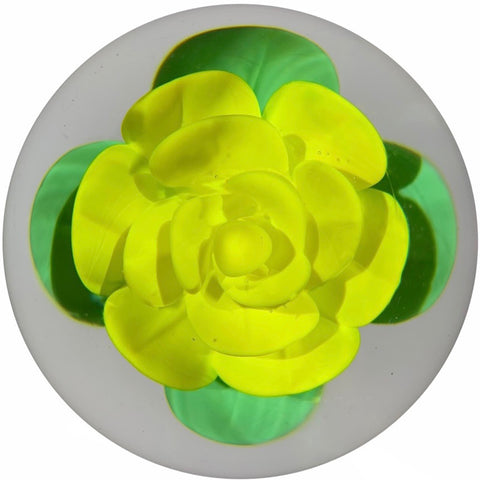 Vintage Robert Hamon Art Glass Paperweight Large Yellow Crimp Rose