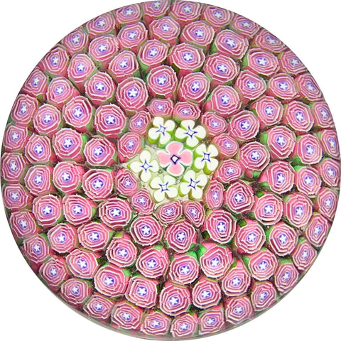 "Damon MacNaught 2019 ""Clichy Style"" Rose Millefiori Carpet Ground Paperweight"