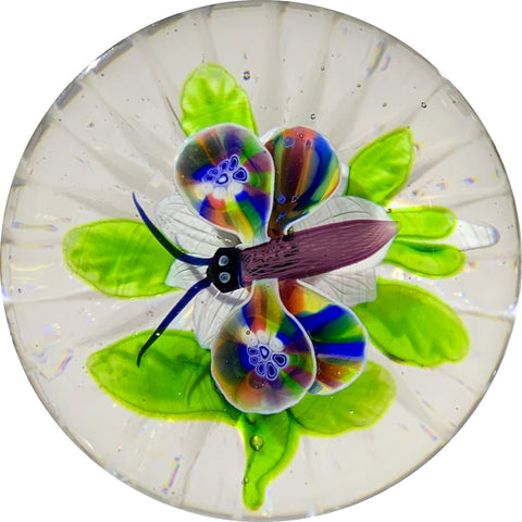 Antique Baccarat Lampwork Butterfly Hovering over White Clematis