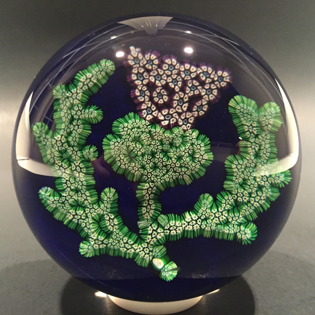 Rare Paul Ysart Art Glass Paperweight Complex Millefiori Scottish Thistle