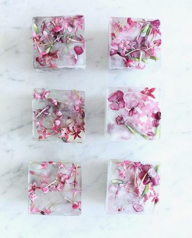 Floral Ice Blocks
