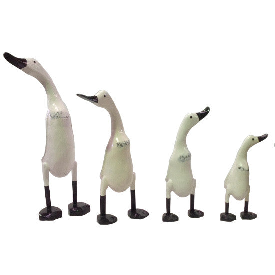White Wooden Ducks with Black feet and beak