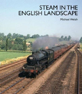 steam in english landscape - The Vale of Rheidol Railway