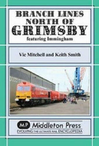 Grimsby, Immingham, Branch Lines North Of Grimsby - The Vale of Rheidol Railway