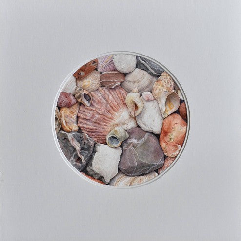 Pink shells giclee print by Mark Azopardi - L'Atelier Natalia Willmott