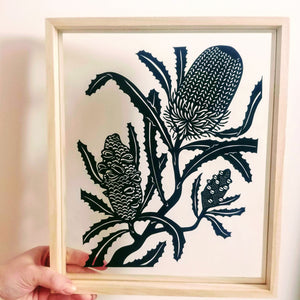 Banksia Life Stages - Large Framed Original