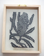 Banksia Pod - Small Framed Original