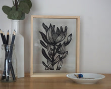 Leucadendron 1 - Medium Framed Original
