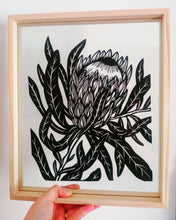Pink Ice Protea - Framed Large