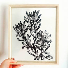 Leucadendron - Large Framed Original