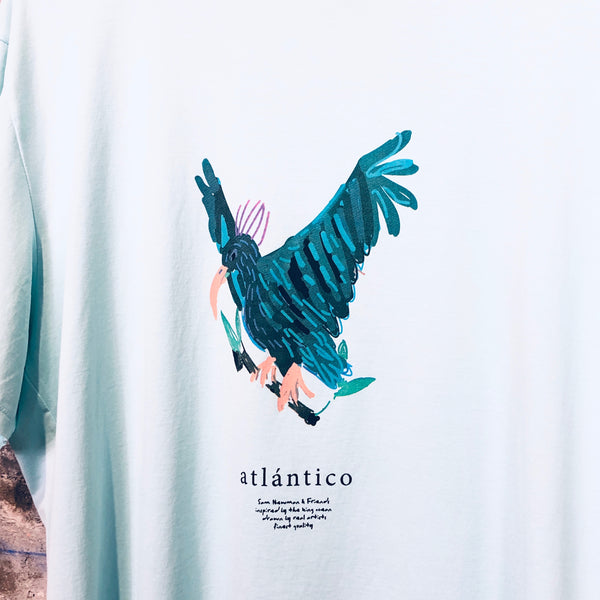 ATLANTIC EAGLE TURQUOISE