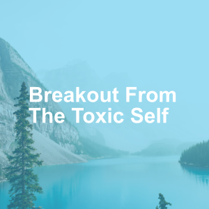 Breakout From The Toxic Self