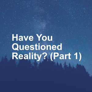 Have You Questioned Reality? (1)