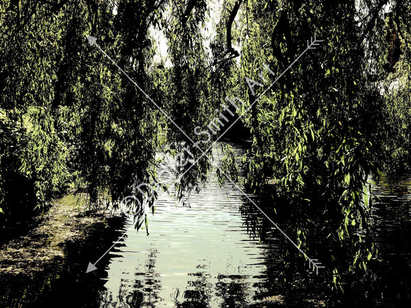 C1104 Willow over the water - Didier-Smith Art