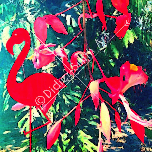 C1211 Red Flamingo - Didier-Smith Art