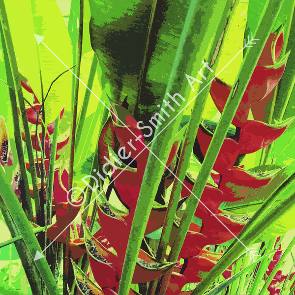 C1308 Red and green tropical plant - Didier-Smith Art