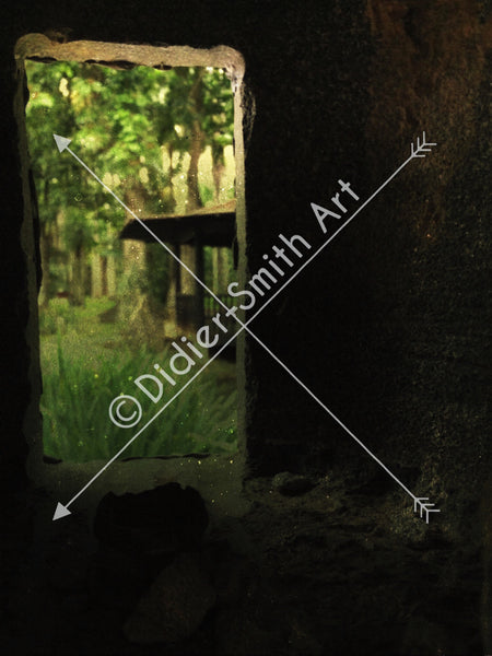 C1457 Doorway to jungle