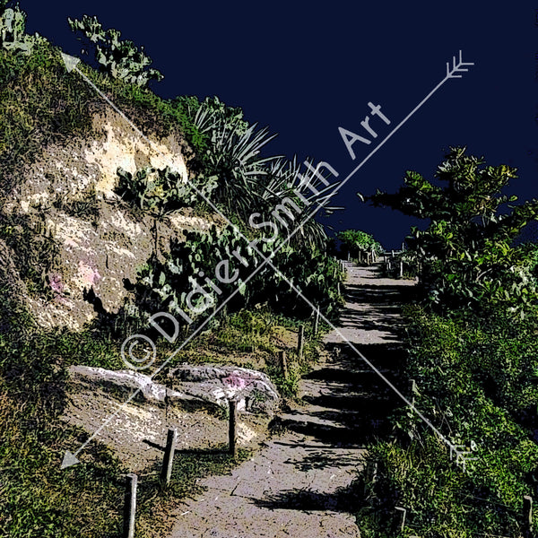 C1117 Steps to the sky Ipanema Arpoador - Didier-Smith Art