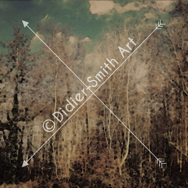 C1282 Moody woods - Didier-Smith Art