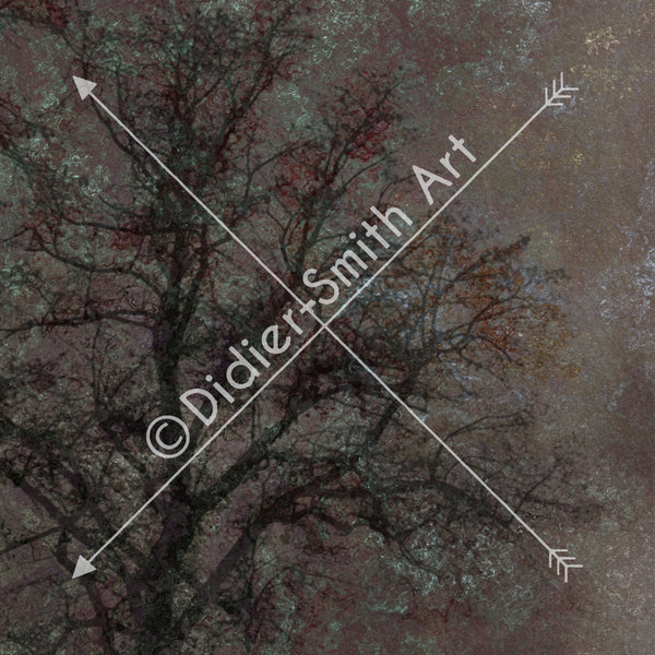 C1571 Dark abstract tree