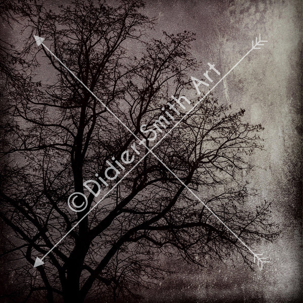 C1573 Dark abstract tree