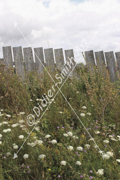 C1581 Fence with flowers