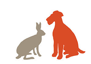 DOG AND HARE
