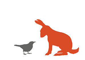 BLACKBIRD AND HARE