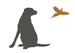LABRADOR AND PHEASANT